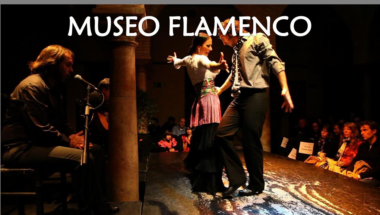 Museo y Show Flamenco