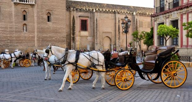 Caballos en Sevilla